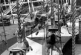 Olympia Fair, 1963.