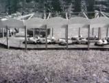 models, 1954.
