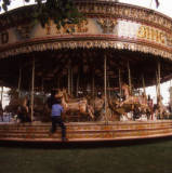 Gallopers, 1984.