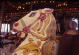 Gallopers horse, 1974.