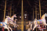 Gallopers, 1974.