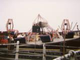 Spalding Fair, 1989.