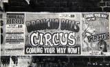 Broncho Bill Circus, 1964.